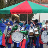 01-02-2014_biberach_tannheim-narrenumzug_fascing_masken_narrenzunft-tannheim_poeppel_new-facts-eu20140201_0151