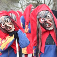01-02-2014_biberach_tannheim-narrenumzug_fascing_masken_narrenzunft-tannheim_poeppel_new-facts-eu20140201_0232