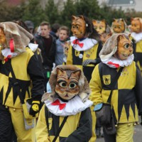 01-02-2014_biberach_tannheim-narrenumzug_fascing_masken_narrenzunft-tannheim_poeppel_new-facts-eu20140201_0254