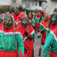 01-02-2014_biberach_tannheim-narrenumzug_fascing_masken_narrenzunft-tannheim_poeppel_new-facts-eu20140201_0259