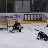 02-02-2014_eishockey_bayernliga-indians_ecdc-memmingen_esc-hassfurt_fuchs_new-facts-eu20140202_0009