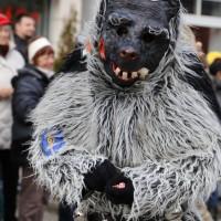 03-02-2014_ravensburg_bad-wurzach_narrensprung_umzug_poeppel_new-facts-eu20140303_0327