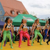 10-05-2014_memmingen_blumenkoenigin_memmingen-blueht_tanz-fest_poeppel_new-facts-eu0064