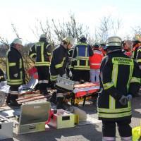 11-02-2014_b12-Altdorf_geisenried_sieben-schwerverletzte_feuerwehr_lkw_pkw_poeppel__bringezu_new-facts-eu20140211_0040