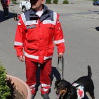 07-05-2014-memmingen-unterallgaeu-brk-rettungshundestaffel-ausbildung-kino-poeppel-new-facts-eu20140607_0006
