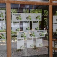17-06-2014-unterallgaeu-legau-umweltstation-brk-wasserwacht-abenteuer-siedler-poeppel-groll-new-facts-eu_0071