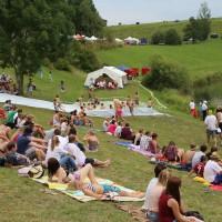 20-07-2014-biberach-haslacher-seenachtsfest-fischerstechen- wettbewerb-poeppel-bringezu-new-facts-eu20140720_0096
