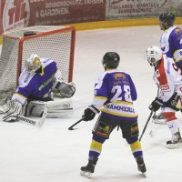 15-12-2014-eishockey-indians-ecdc-memmingen-waldkraiburg-sieg-fuchs-new-facts-eu0066