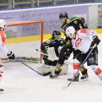 26-12-2014-memmingen-eishockey-idians-ecdc-moosburg-fuchs-new-facts-eu0065