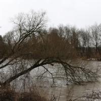 04-01-15_BW_Memmingen_egelsee_Hochwasserlage_Iller_Wasserwerk-Mooshausen_poeppel-new-facts-eu0005