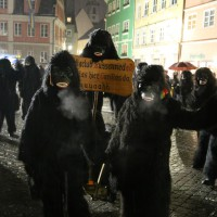 17-01-15_Memmingen_Fasnet_Fasching_Nachtumzug_Stadtbachhexen_Poeppel_new-facts-eu0336