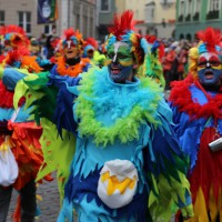 18-01-15_Memmingen_Narrensprung_Fasnet_Fasching_Nachtumzug_Stadtbachhexen_Poeppel_new-facts-eu0250
