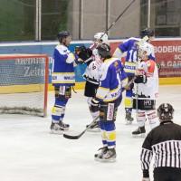 23-01-15_Eishockey_Indians_ECDC-Memmingen_Waldkraiburg_Match_Fuchs_new-facts-eu0046
