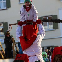 07-02-15_Narrensprung-Legau_Loewen-77_Poeppel_new-facts-eu0769