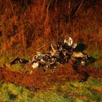 17-04-15_A7_Dettingen_Berkheim_Unfall_Feuerwehr_wis_new-facts-eu0003