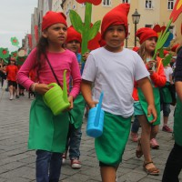 23-07-2015_Memminger-Kinderfest-2015_Umzug_Kuehnl_new-facts-eu0095