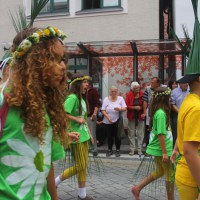23-07-2015_Memminger-Kinderfest-2015_Umzug_Kuehnl_new-facts-eu0106