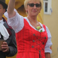 23-07-2015_Memminger-Kinderfest-2015_Umzug_Kuehnl_new-facts-eu0198