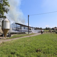 Brand-Rieden-Vollbrand-Schaden-Feuerwehr-Ostallgäu-Grosseinsatz-Bringezu-New-facts (4)