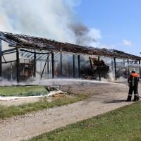 Brand-Rieden-Vollbrand-Schaden-Feuerwehr-Ostallgäu-Grosseinsatz-Bringezu-New-facts (8)