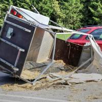 B12-Geisenried-28.09.2015-Viehhänger-Unfall-Teilsperrung-Tiere-verletzt-Feuerwehr Geisenried-Polizei-Bringezu-new-facts (4)