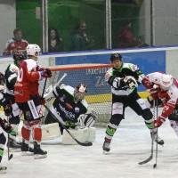06-11-2015_Memmingen_Eishockey_Randale_Indians_ECDC_Hoechstadt_Polizei_Fuchs_new-facts-eu0004