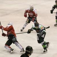 06-11-2015_Memmingen_Eishockey_Randale_Indians_ECDC_Hoechstadt_Polizei_Fuchs_new-facts-eu0008