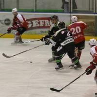06-11-2015_Memmingen_Eishockey_Randale_Indians_ECDC_Hoechstadt_Polizei_Fuchs_new-facts-eu0010