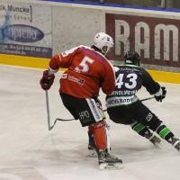 06-11-2015_Memmingen_Eishockey_Randale_Indians_ECDC_Hoechstadt_Polizei_Fuchs_new-facts-eu0011