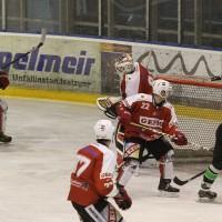 06-11-2015_Memmingen_Eishockey_Randale_Indians_ECDC_Hoechstadt_Polizei_Fuchs_new-facts-eu0012