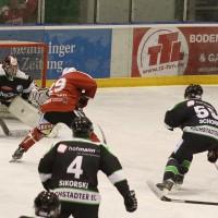 06-11-2015_Memmingen_Eishockey_Randale_Indians_ECDC_Hoechstadt_Polizei_Fuchs_new-facts-eu0015