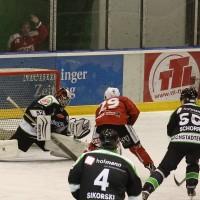 06-11-2015_Memmingen_Eishockey_Randale_Indians_ECDC_Hoechstadt_Polizei_Fuchs_new-facts-eu0017