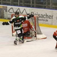 06-11-2015_Memmingen_Eishockey_Randale_Indians_ECDC_Hoechstadt_Polizei_Fuchs_new-facts-eu0023