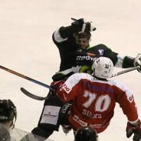 06-11-2015_Memmingen_Eishockey_Randale_Indians_ECDC_Hoechstadt_Polizei_Fuchs_new-facts-eu0024
