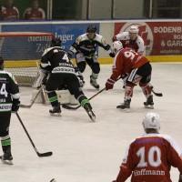 06-11-2015_Memmingen_Eishockey_Randale_Indians_ECDC_Hoechstadt_Polizei_Fuchs_new-facts-eu0030