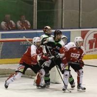 06-11-2015_Memmingen_Eishockey_Randale_Indians_ECDC_Hoechstadt_Polizei_Fuchs_new-facts-eu0034