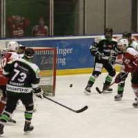 06-11-2015_Memmingen_Eishockey_Randale_Indians_ECDC_Hoechstadt_Polizei_Fuchs_new-facts-eu0044