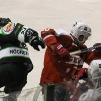 06-11-2015_Memmingen_Eishockey_Randale_Indians_ECDC_Hoechstadt_Polizei_Fuchs_new-facts-eu0048