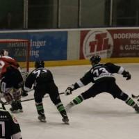 06-11-2015_Memmingen_Eishockey_Randale_Indians_ECDC_Hoechstadt_Polizei_Fuchs_new-facts-eu0051