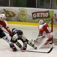 06-11-2015_Memmingen_Eishockey_Randale_Indians_ECDC_Hoechstadt_Polizei_Fuchs_new-facts-eu0053