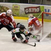 06-11-2015_Memmingen_Eishockey_Randale_Indians_ECDC_Hoechstadt_Polizei_Fuchs_new-facts-eu0055