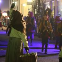 05-02-201_Biberach_Ochsenhausen_Nachtumzug_Poeppel_new-facts-eu_mm-zeitung-online_066