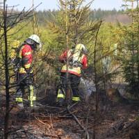 04-04-2016_Biberach_Tannheim_Rot_Waldbrand_Feuerwehr_Poppel20160404_0010