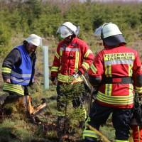04-04-2016_Biberach_Tannheim_Rot_Waldbrand_Feuerwehr_Poppel20160404_0034