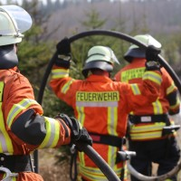 04-04-2016_Biberach_Tannheim_Rot_Waldbrand_Feuerwehr_Poppel20160404_0038