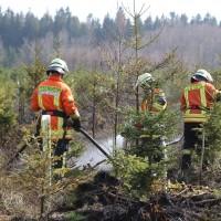 04-04-2016_Biberach_Tannheim_Rot_Waldbrand_Feuerwehr_Poppel20160404_0041
