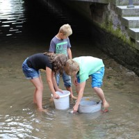 23-07-2016_Memminger-Fischertag-2016_Bach-Schmotz_Poeppel_0076