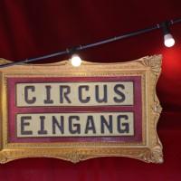19-08-2016_Memmingen_CIRCUS-KRONE_Tierschau_Circus-Baby_Seehunde_Poeppel_0113