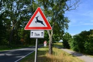 Wildwechsel, Schild, Wildtiere, Rehwild, Wild,  Wildunfall, Landstrae, Verkehrsschild