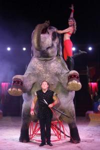 Foto: Circus Carl Busch